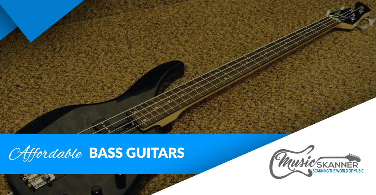 Affordable bass guitar intro
