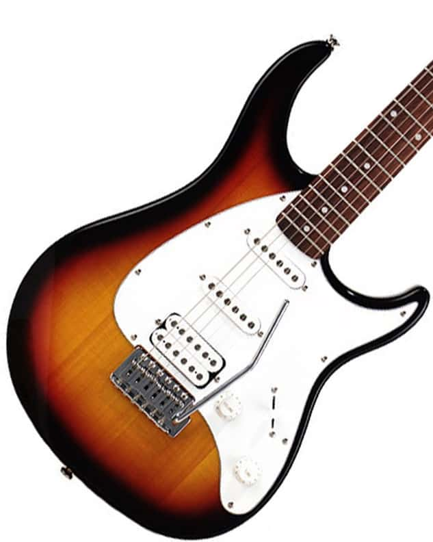 shape of the body is a modified Stratocaster with a bit thinner horns