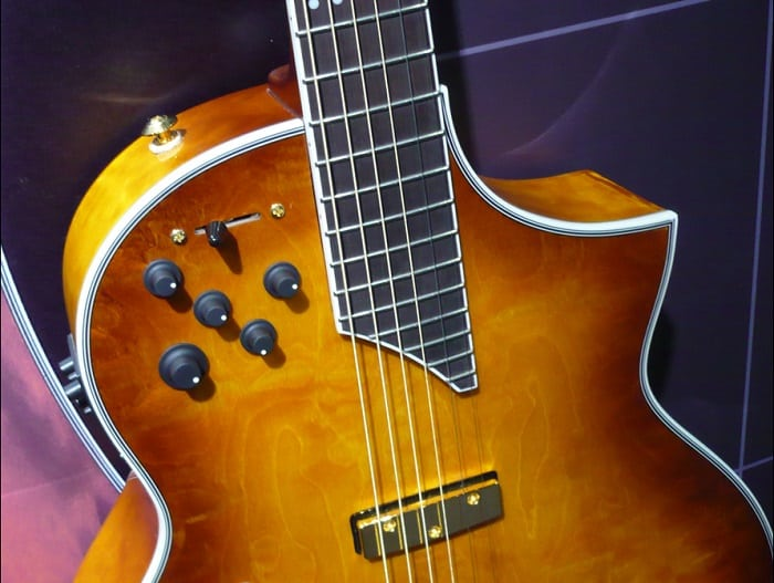 This combination of pickups gives you both an acoustic and electric properties in one guitar.