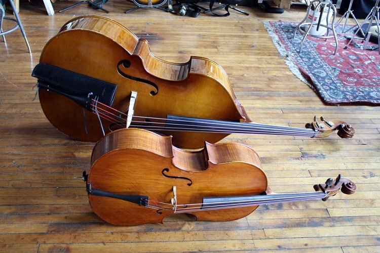 bass vs cello comparison