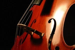 comparing violin and cello popularity