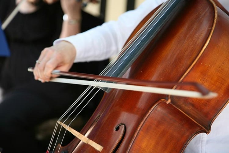 difference between cello and bass