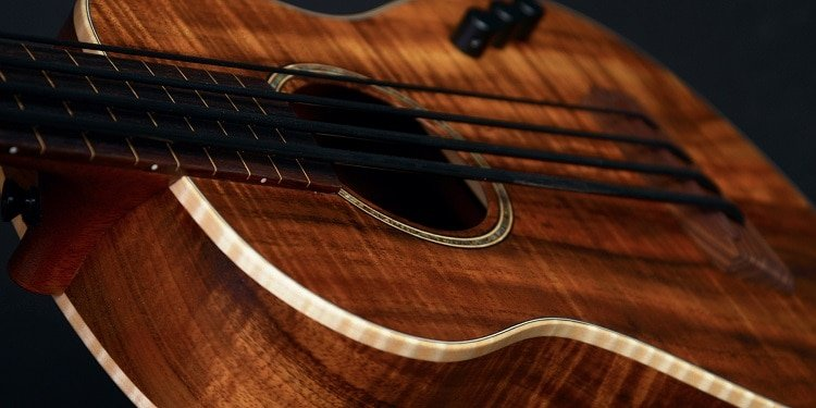 four pegs appear in the headstock of the ukulele, and they are always used  for regular kind of strings tuning